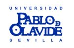 Summer Spanish in Seville, Spain. Summer Session II. Universidad Pablo de Olavide.